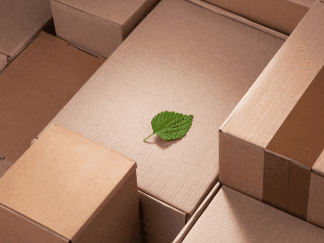 Synergy Retail Support Sustainable Fulfilment Packaging